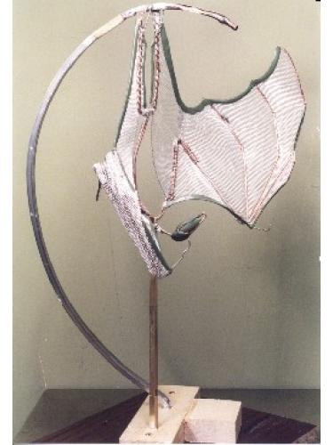 Fruit Bat Armature