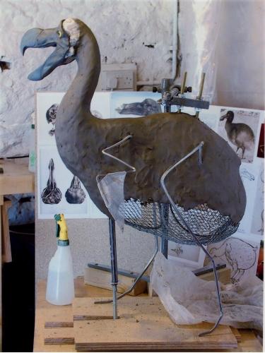 Reconstruction: Dodo